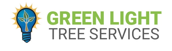 Green light tree services long island logo